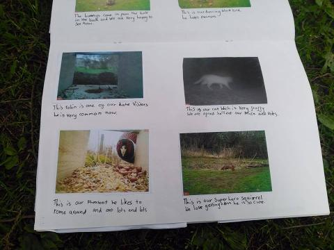 Grandtully Primary School and the SNH camera trap project